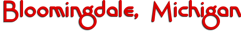 Bloomingdale business directory logo